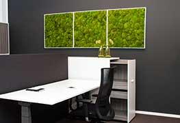 Pflanzenbild Impression 5