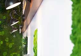 Pflanzenbild Impression 6