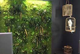 Pflanzenbild Impression 9