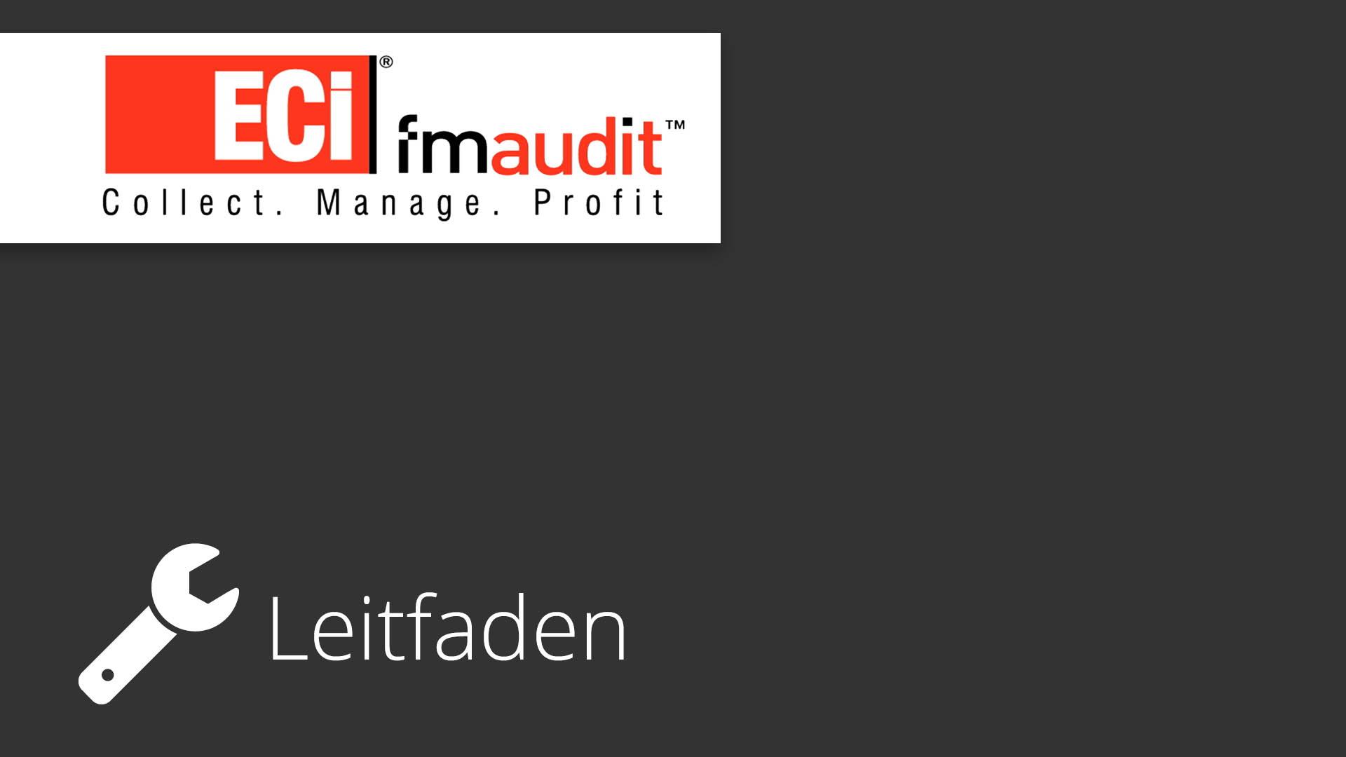 FM-Audit - Update Guide - Bild